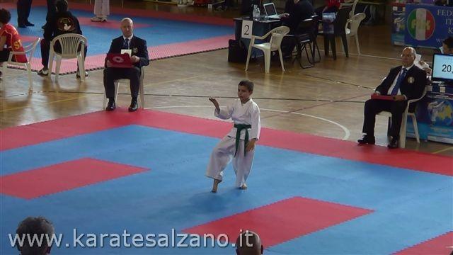 CAMPIONATO REGIONALE FIK - 2013