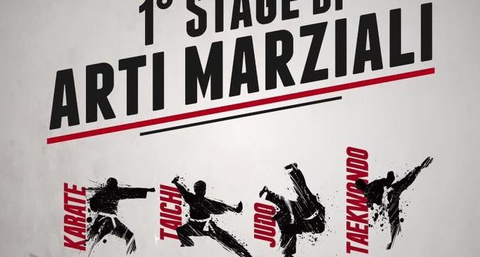 Stage arti marziali 2015